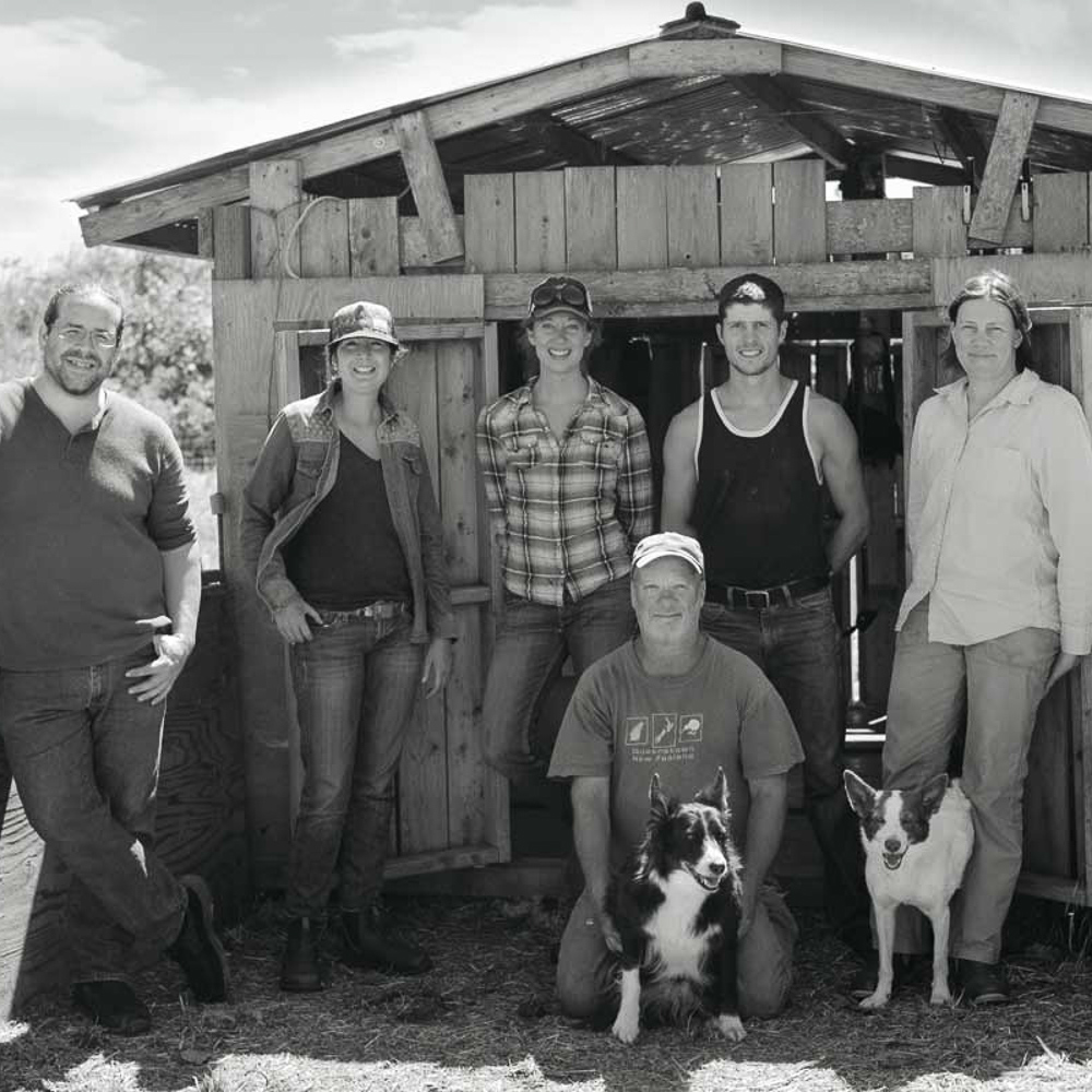 FARM TO NEEDLE : STORIES OF WOOL