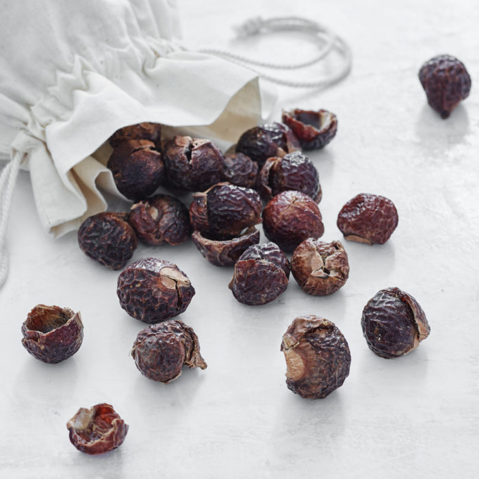 SOAP NUTS - Care By Me